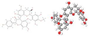 d2c99a2a16fbd4b5b20677f15f6512fa 1024x417 1 300x122 - 抗酸化サプリメント「アンチ-OXY」のご案内