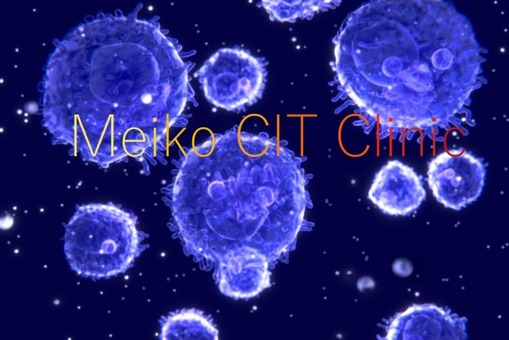 lymphocyte tr1 1024x685 1 - 治療