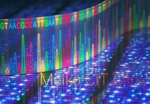 遺伝子配列解析